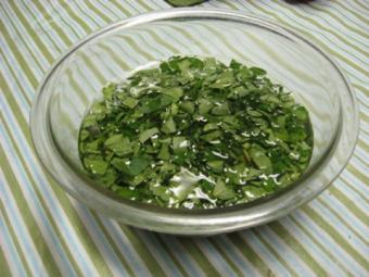 Stevia, planta cu zero calorii