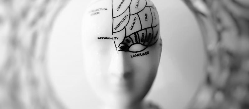 Alimentatie pentru un creier sanatos