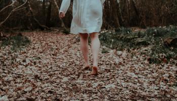 Beneficiile unei plimbari prin padure - silvoterapia sau baia de padure
