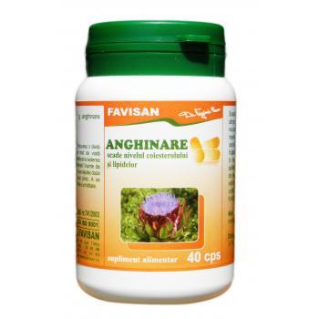 Anghinare b002 40 cps FAVISAN