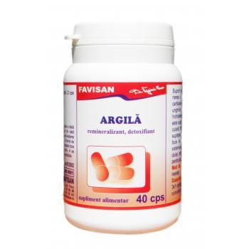 Argila b055 40 cps FAVISAN