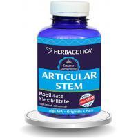 Articular stem