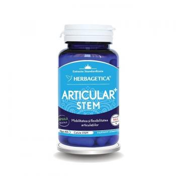Articular stem 60 cps HERBAGETICA