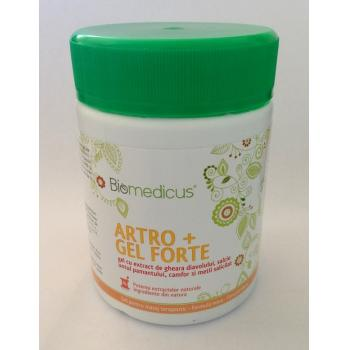 Artro + gel forte 250 ml BIOMEDICUS