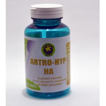 Artro-hyp ha 60 cps HYPERICUM