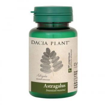 Astragalus 60 cpr DACIA PLANT