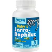 Baby s jarro dophilus +gos