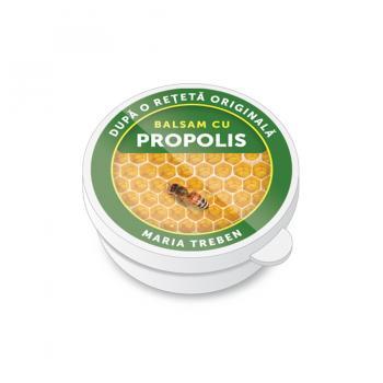Balsam cu propolis 30 ml TRANSVITAL