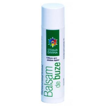 Balsam de buze cu catina 4,5 ml STEAUA DIVINA
