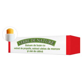 Balsam de buze cu extract de propolis, extract uleios de morcov si ulei de catina 4.8 ml VERRE DE NATURE