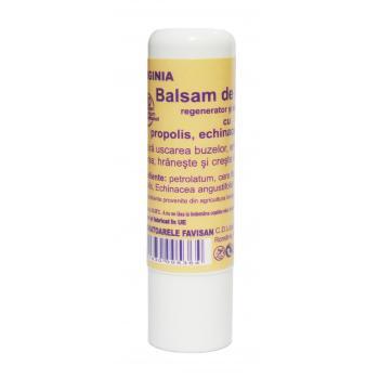 Balsam de buze cu propolis m127 5 ml FAVISAN