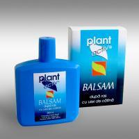 Balsam dupa ras cu ulei de catina