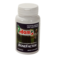 Bonefactor ADAMS SUPPLEMENTS