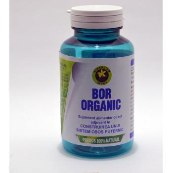 Bor organic 60 cps HYPERICUM