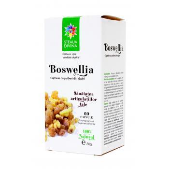 Boswellia 60 cps STEAUA DIVINA