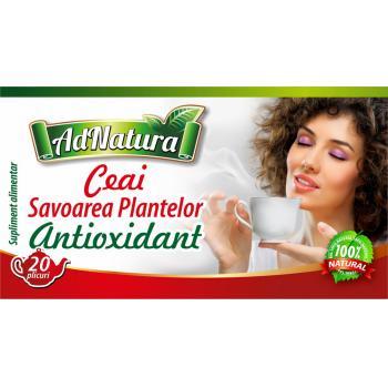 Ceai antioxidant savoarea plantelor 20 pl ADNATURA