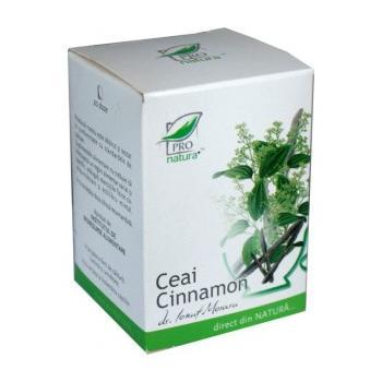 Ceai cinnamon 20 pl PRO NATURA