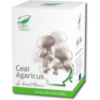 Ceai de agaricus