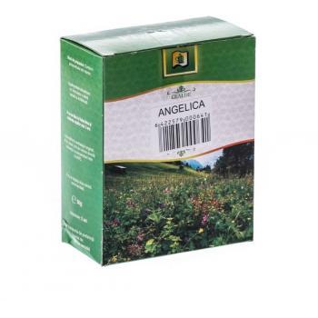 Ceai de angelica 50 gr STEF MAR