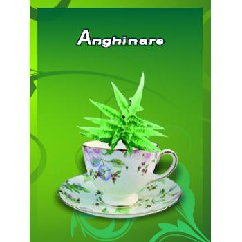 Ceai de anghinare 50 gr CYANI