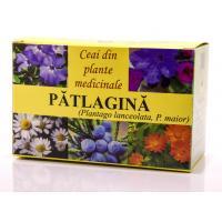 Ceai de patlagina
