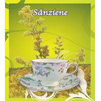 Ceai de sanziene