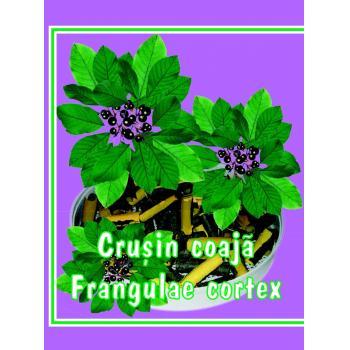 Ceai din coaja de crusin 50 gr CYANI
