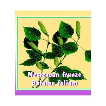 Ceai din frunze de mesteacan 50 gr CYANI