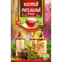 Ceai din frunze de patlagina
