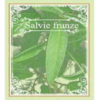Ceai din frunze de salvie