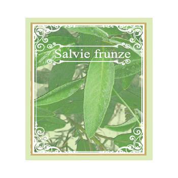 Ceai din frunze de salvie 50 gr CYANI