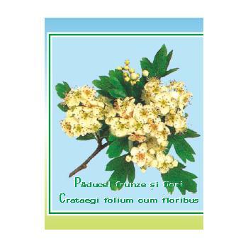 Ceai din frunze si flori de paducel 50 gr CYANI