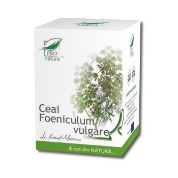 Ceai foeniculum vulgare 20 pl PRO NATURA