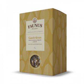 Ceai gastricus 90 gr FAUNUS PLANT