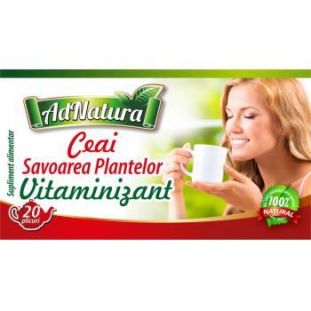 Ceai vitaminizant savoarea plantelor 20 pl ADNATURA