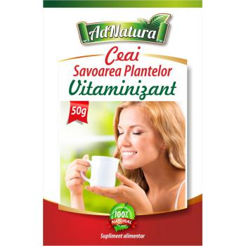 Ceai vitaminizant savoarea plantelor 50 gr ADNATURA