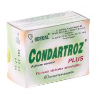 Condartroz plus HOFIGAL