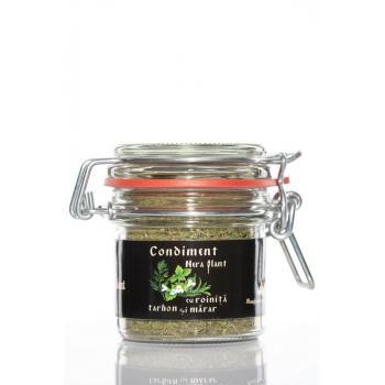 Condiment cu roinita tarhon si marar 33 gr NERA PLANT