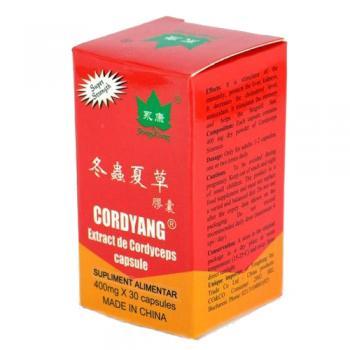 Cordyang 30 cps YONG KANG