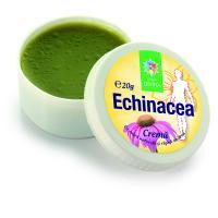 Crema de echinacea