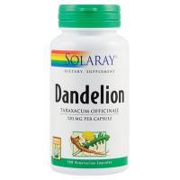 Dandelion (papadie)