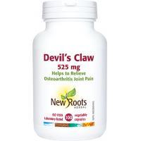 Devil-s claw gheara diavolului