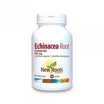 Echinacea root forte – 400 mg  90 cps NEW ROOTS