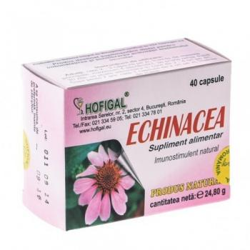 Echinaceea 40 cps HOFIGAL