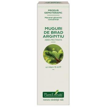 Extract concentrat din muguri de brad - abies pectinata mg 15 ml PLANTEXTRAKT