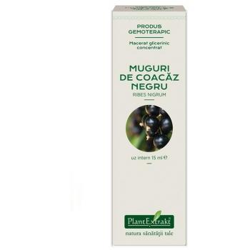 Extract concentrat din muguri de coacaz negru - ribes nigrum mg 15 ml PLANTEXTRAKT