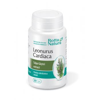 Extract de leonurus cardiaca 30 cps ROTTA NATURA
