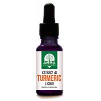 Extract de turmeric lichid 10ml AMMA AYURVEDA