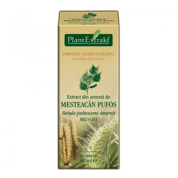 Extract din amenti de mesteacan pufos - betula pubescens amenti mg=d1 50 ml PLANTEXTRAKT