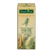 Extract din amenti de salcie - salix alba amenti mg=d1